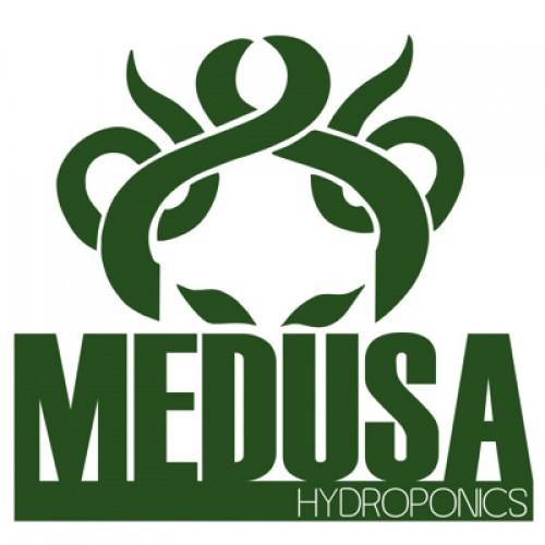 Medusa Systems