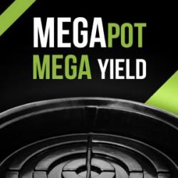 MegaPot