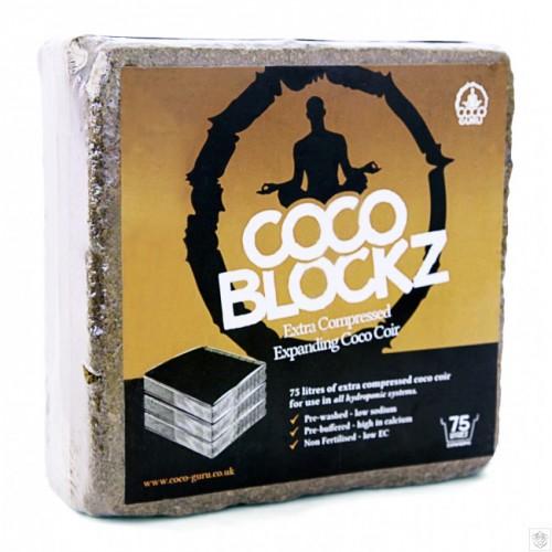 Coco Blockz